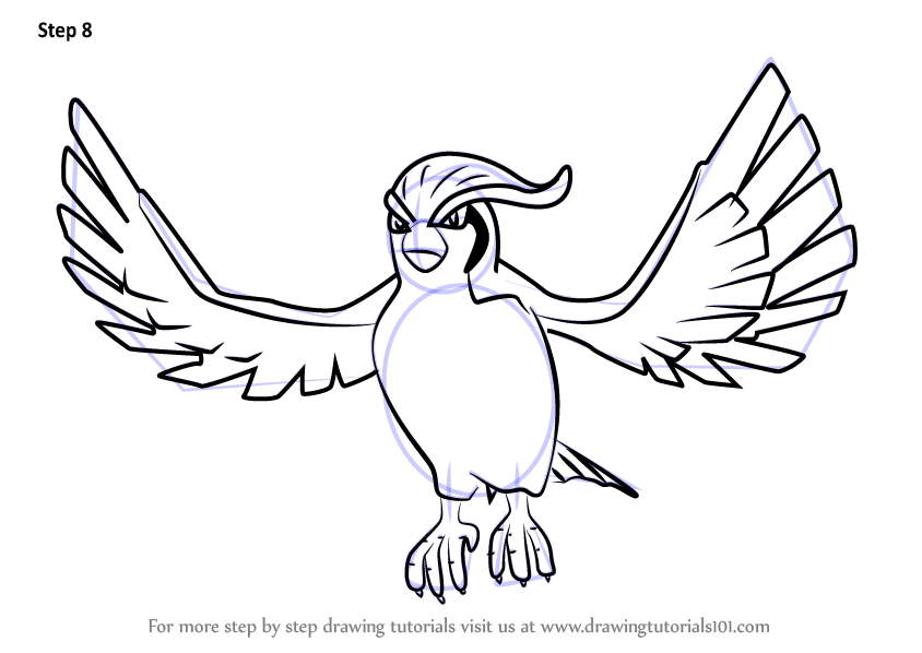 pidgeot pokemon coloring pages - photo#24
