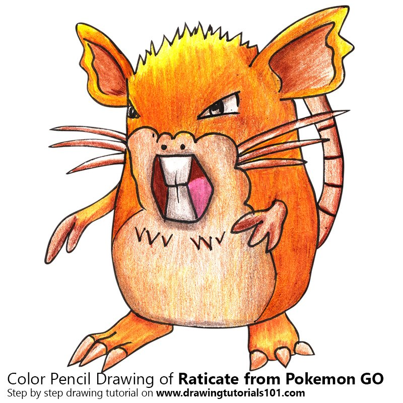 Raticate from Pokemon GO Color Pencil Drawing