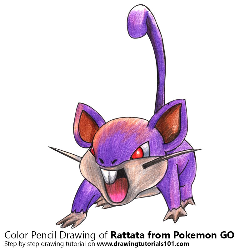 Rattata from Pokemon GO Color Pencil Drawing