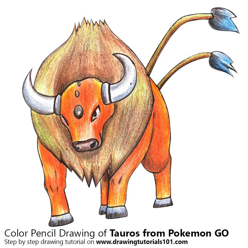 Tauros from Pokemon GO Color Pencil Drawing