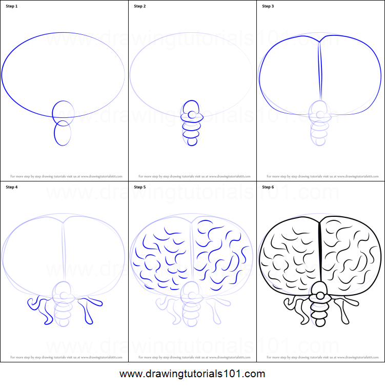 How to draw brain of cthulhu from terraria printable step by step how to draw brain of cthulhu from terraria printable step by step drawing sheet drawingtutorials101 ccuart Image collections